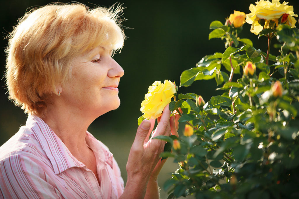 Elderly Care Westfield NJ - What is NEAT and How Can it Improve Senior Health?